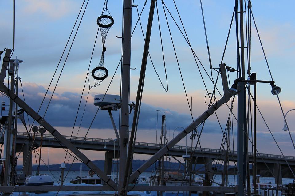COMEX habilita cobro de drawback 2015 para el sector pesquero