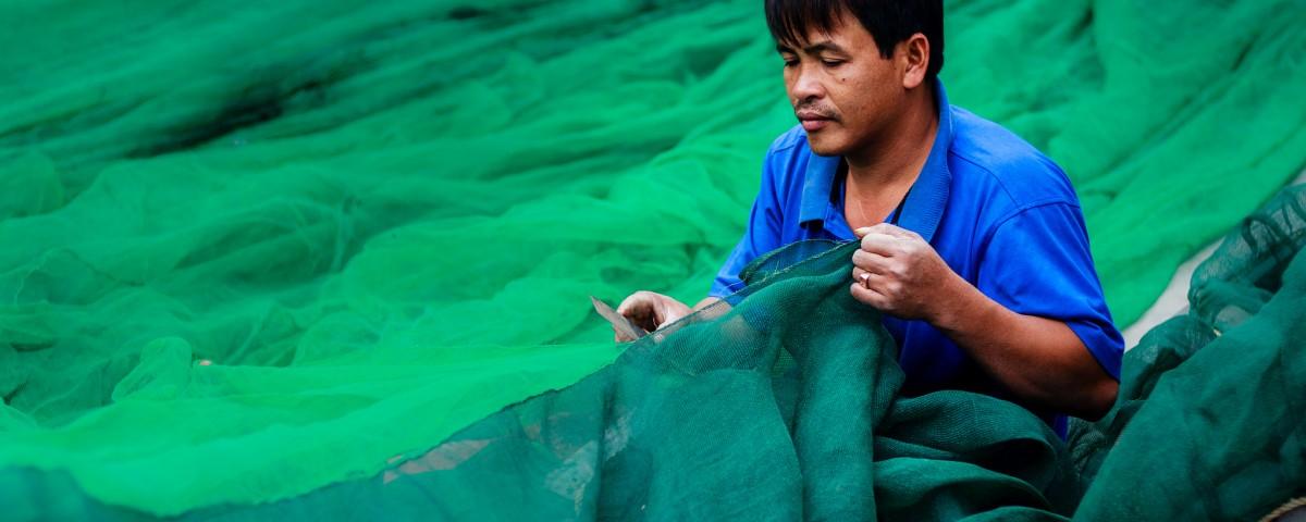 Pesca exportaciones