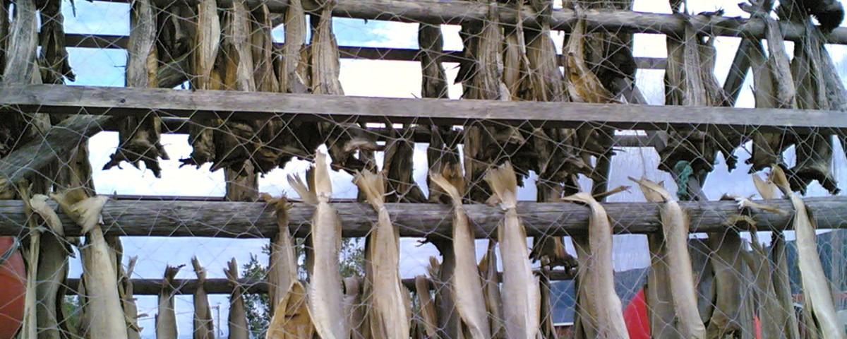 Pesca. negocios europeo Ecuador