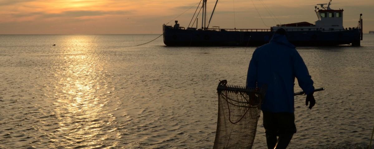 Pesca ecuador CNP