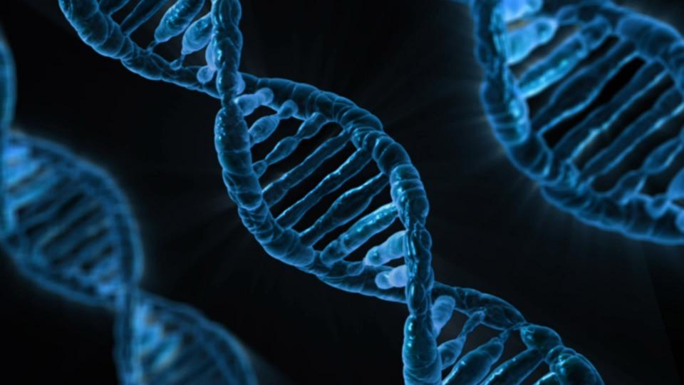 TECNOLOGÍAS DEL ADN PARA LA PESCA