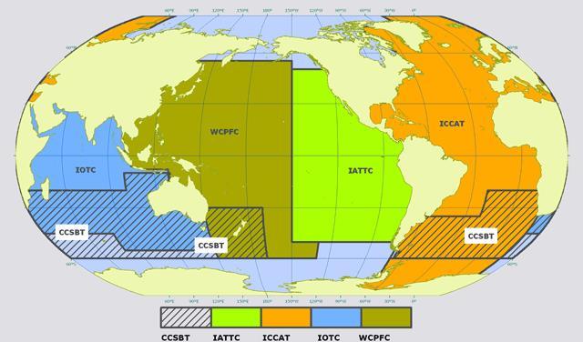 Figura 5. Organizaciones regionales de ordenamiento pesquero de especies altamente migratorias, principalmente atún. Fuente: FAO, 2010. Competence areas of Tuna Regional Fisheries Management Organizations.