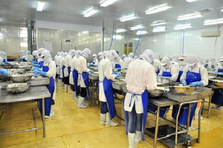 Ecuador tiene 15 certificaciones internacionales de calidad para el atún