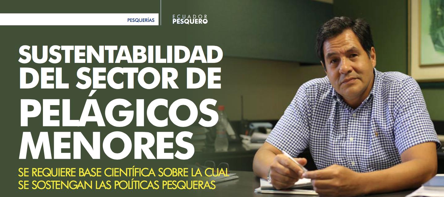 SUSTENTABILIDAD DEL SECTOR DE PELÁGICOS MENORES