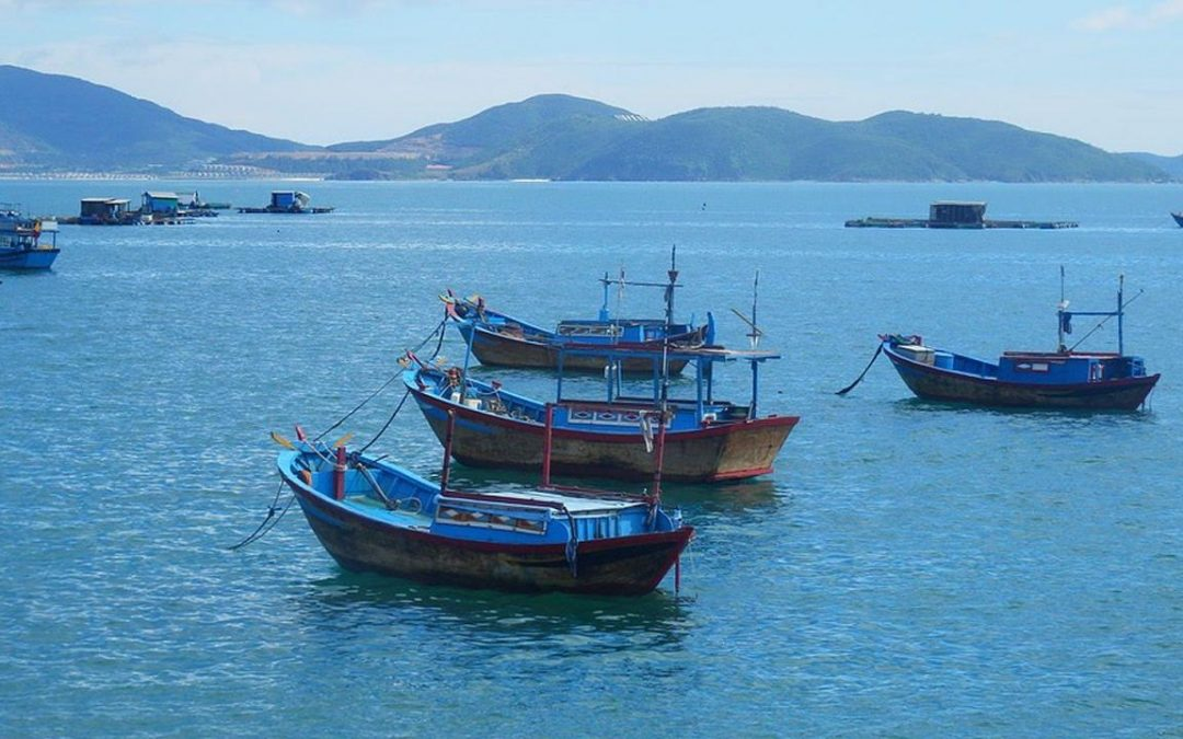 La UE endurece su lucha contra la pesca ilegal en los países asiáticos
