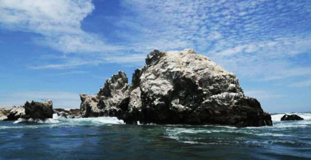 Perú creará reserva natural marina en frontera con Ecuador