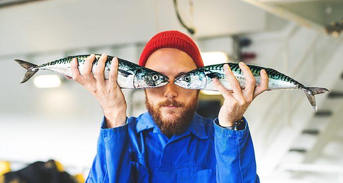Los islandeses convierten un bacalao de $12 en productos que suman un valor de $3.500