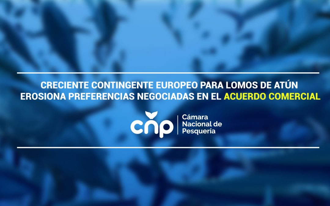 Creciente contingente europeo para lomos de atún erosiona preferencias negociadas en el Acuerdo Comercial