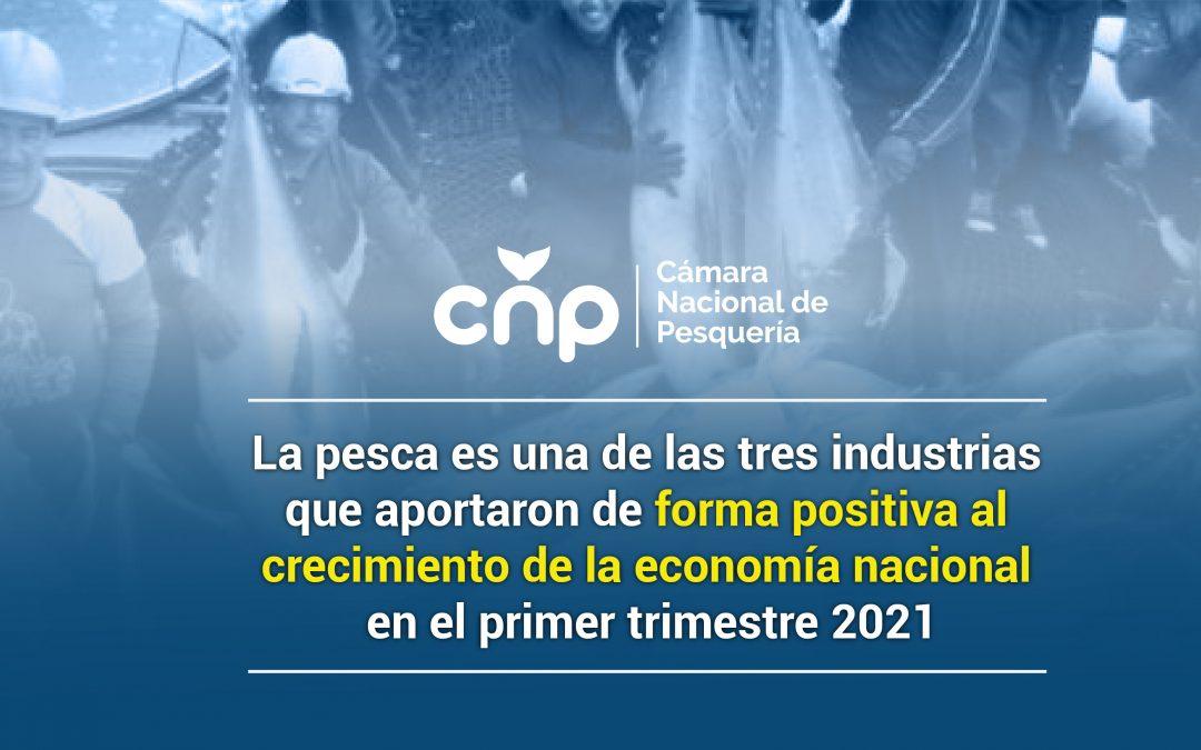 La pesca es una de las tres industrias que aportaron de forma positiva al crecimiento de la economía nacional en el primer trimestre 2021