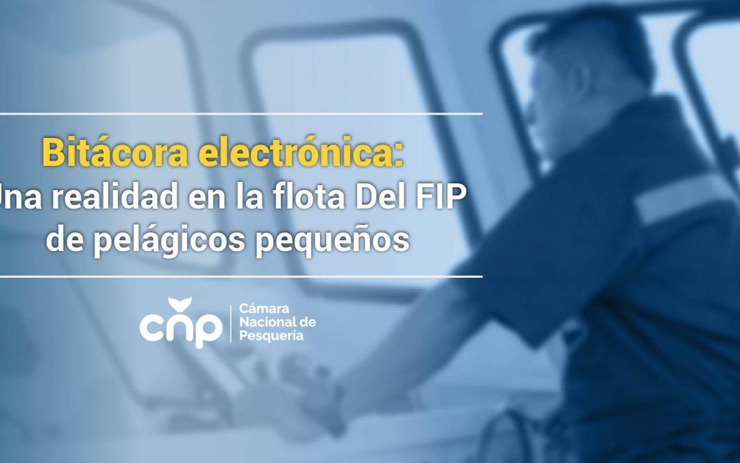 Bitácora electrónica: Una realidad en la flota del FIP de pelágicos pequeños